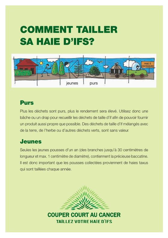 wallonie02_flyer_a5_2015_page_2.jpeg